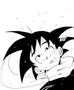 Son Goku in snow