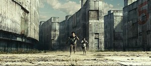 The Maze Runner Set