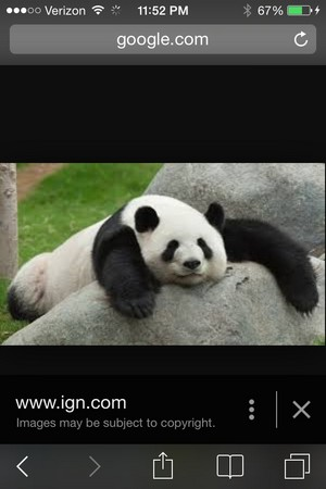 Tried Panda