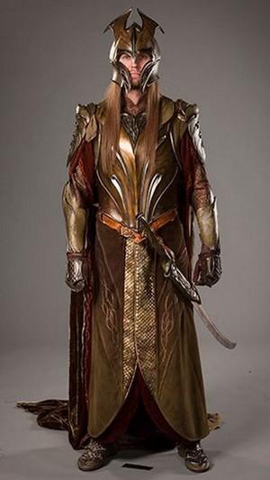 mirkwood warrior