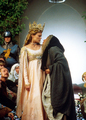 princess bride - the-princess-bride photo