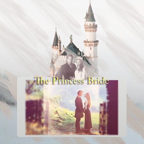 The Princess Bride wallpaper titled princess bride