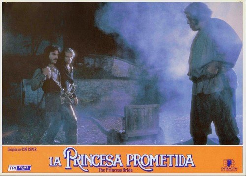 The Princess Bride fond d'écran possibly with a smoke screen, a fire, and animé entitled princess bride
