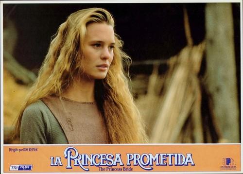 The Princess Bride fond d'écran with a portrait called princess bride
