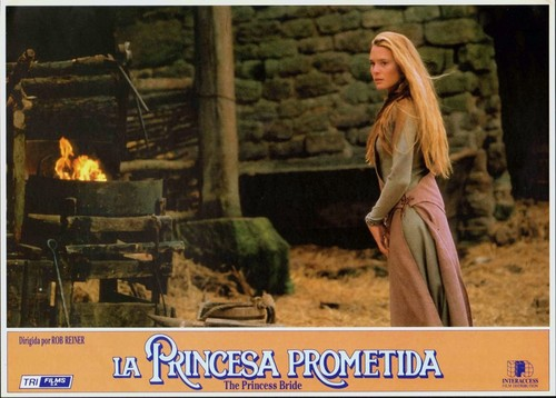 The Princess Bride fond d'écran possibly containing a feu entitled princess bride