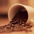 ★ Coffee ★ - coffee photo