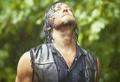 ★ Daryl Dixon ★ - daryl-dixon photo