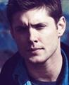 ✖ Dean Winchester ✖ - dean-winchester photo