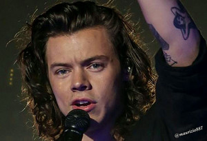 Harry Styles,on the road again tour 2015