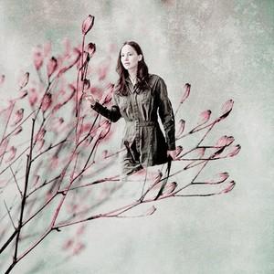 ☆ Katniss Everdeen ☆