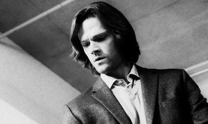 ● Sam Winchester ●