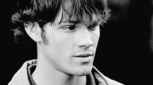 Sam Winchester wallpaper probably containing a portrait called ★ Sam Winchester ★
