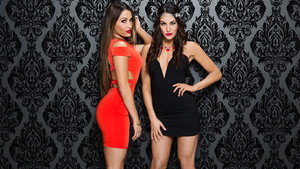 Valentine's siku Divas 2015 - Bella Twins