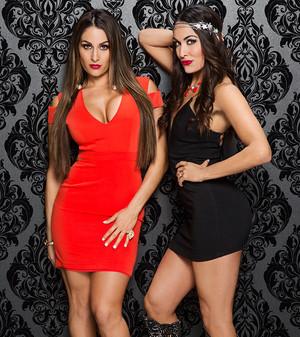 Valentine's jour Divas 2015 - Bella Twins