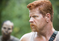 """5x11 """"The Distance"""" - the-walking-dead photo"""