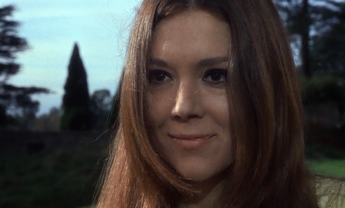 Diana Rigg kertas dinding containing a portrait called A Midsummer Night's Dream