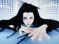 Amy Lee    - evanescence photo
