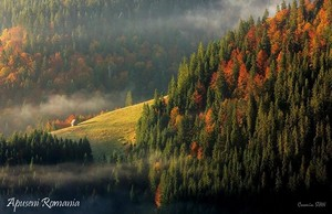 Apuseni mountains Carpathians Romania