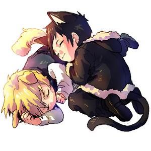 Awwww! Izaya and Shizuo