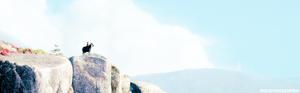 Merida - Legende der Highlands Sceneries