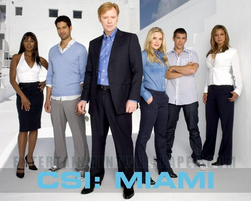 CSI: Miami wallpaper with a business suit, a suit, and a well dressed person titled CSI: Miami