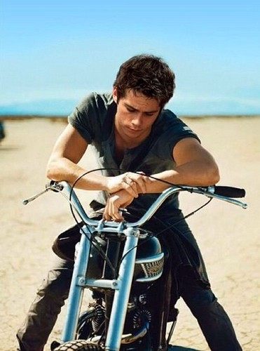 Dylan O'Brien wallpaper probably containing a bicycle, a velocipede, and a bicycling called Dylan O'Brien