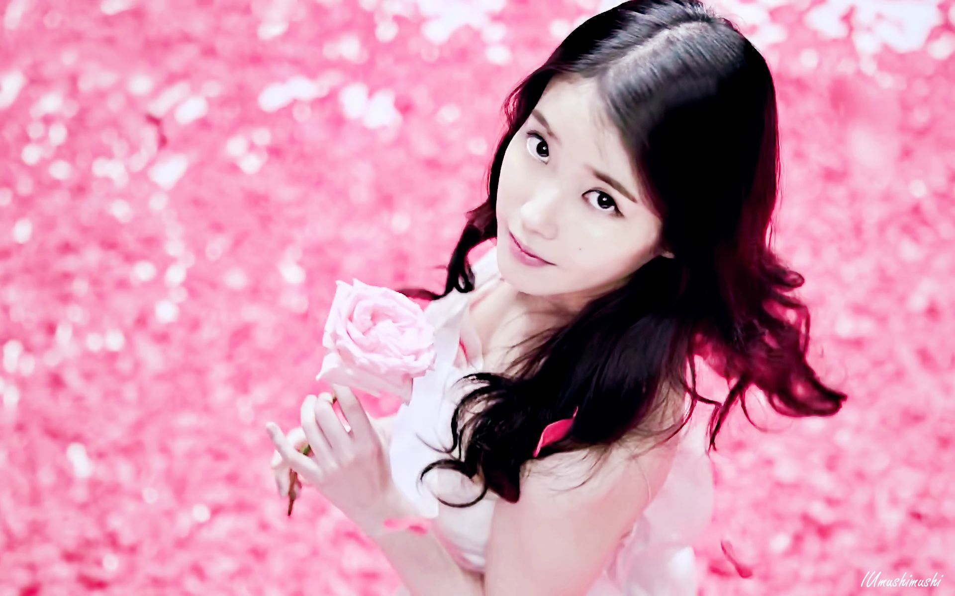 floweru 1920 x 1200 iu wallpaper 38162055 fanpop