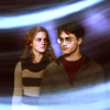 Harry and Hermione photo probably with a hot tub entitled Harmony - Harry and Hermione