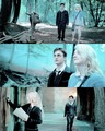 Harry and Luna  - harry-potter photo