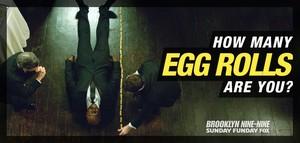 Height in Egg Rolls
