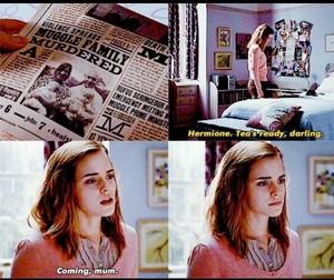 Hermione Granger's Desicion