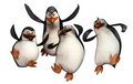 Made with Photomania - penguins-of-madagascar fan art