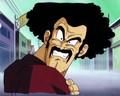 Mr. Satan/Hercule