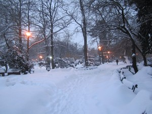 Parcul Cismigiu park Bucharest Bucuresti Romania winter