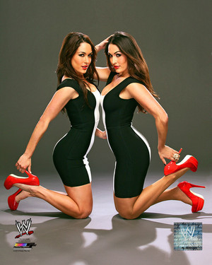 Promotional चित्र - Bella Twins
