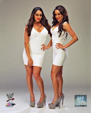 Promotional Foto - Bella Twins