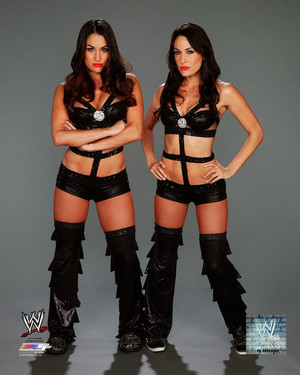 Promotional litrato - Bella Twins