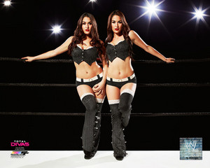 Promotional foto - Bella Twins