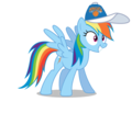Rainbow Dash wearing a New York Knicks cap