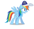 Rainbow Dash wearing a Sacramento Kings cap