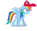 Rainbow Dash wearing a St. Louis Cardinals cap
