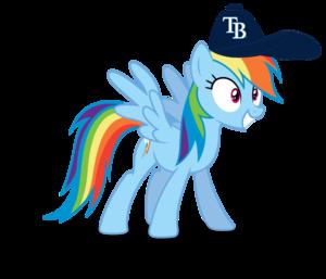 regenbogen Dash wearing a Tampa bucht Rays kappe