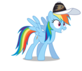 Rainbow Dash wearing an Anaheim Ducks cap