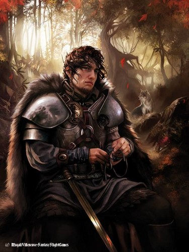 A Song of Ice and Fire wallpaper possibly containing a breastplate called Robb Stark