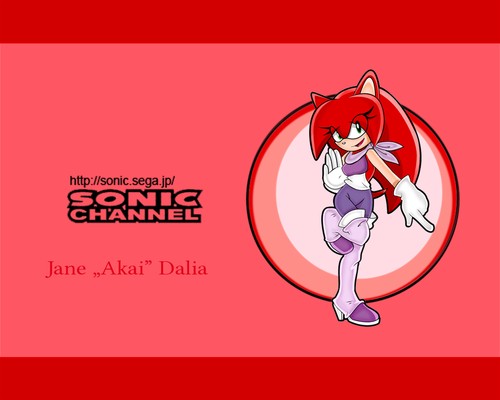 """Sonic Fan Characters wallpaper probably with anime called SONIC CHANNEL: Jane """"Akai"""" Dalia"""
