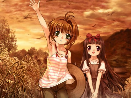 Sakura Cardcaptors wallpaper entitled Sakura and Tomoyo