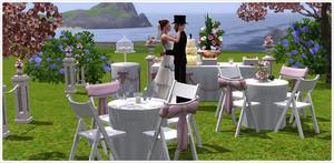 Sims 3 Wedding pics