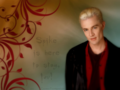 Spike is here to stay, luv! - buffy-the-vampire-slayer wallpaper