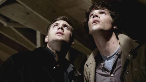 Sam Winchester wallpaper entitled Supernatural 1x08