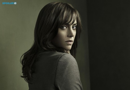 The Following wallpaper with a portrait called THE FOLLOWING SEASON 3 PROMOTIONAL CAST PHOTOS